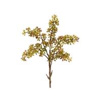 Tige de plantes grasses vertes et bourgogne 12''