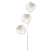 White Pompoms on Stem