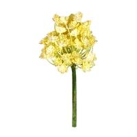Tige de rosette succulente jaune 10''