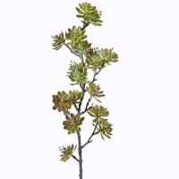 Tige de succulentes, 22''