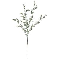 Eucalyptus Branch, 33''