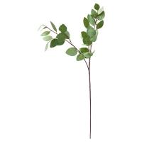 Tige d'eucalyptus ''heart'' 31''