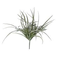 Tige d'herbe vert-gris, 17''