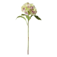 Tige d'hydrangée verte et rose 19''