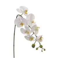 Tige d'orchidée blanche 28,5''
