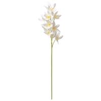 Tige d'orchidée cymbidium crème 30''