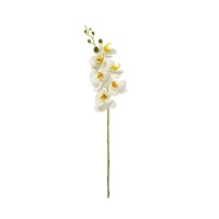 White phalaenopsis spray 33''