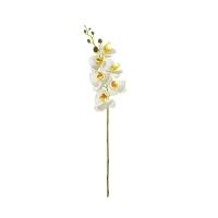 Tige d'orchidée phalaenopsis blanche 33''