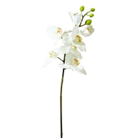 28'' White ''real touch'' phalaenopsis orchid spray