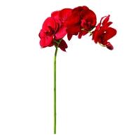 Tige d'orchidée rouge 28''