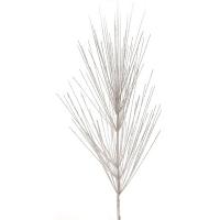 Tige géante de pin blanche brillante 36''