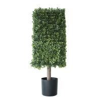 Deluxe boxwood square topiary 2.6 feet