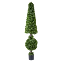 American Boxwood Topiary, 72''