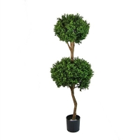 4,5' Double boxwood topiary int./ext.,  2 years warranty