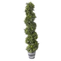 Arbuste, topiaire de buis 4'