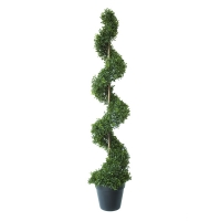 Topiaire spirale en boxwood contre uv 4'