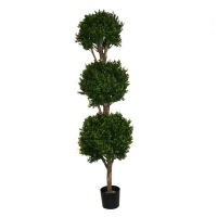 5' Triple boxwood topiary int./ext., 2 years warranty