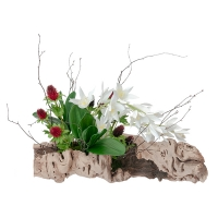Flowers & Greenery on Log