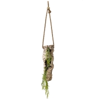 Suspended Vine Trunk with Willow Greenery