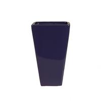 Vase de couleur aubergine 4x6