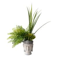 Pot bouddha, verdure