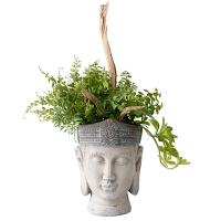 Pot bouddha, verdure et bois