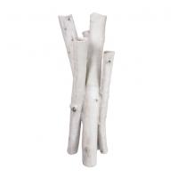 Vase en bouleaux blanc 7 x 18''