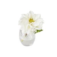 Vase en verre avec Dahlia blanc 5,5''