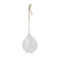 Hanging glass terrarium 9 x 6 x 6''