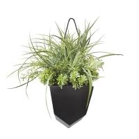 Verdure dans pot suspendu noir 19 x 25''