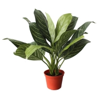Plante artificielle, xanthosoma 18''