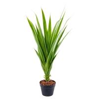 Artificial Yucca Plant, indoor 41''