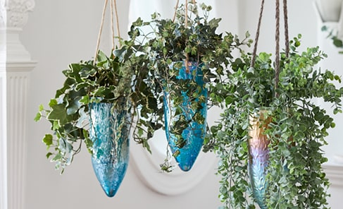 cascading foliage with succulents in hanging