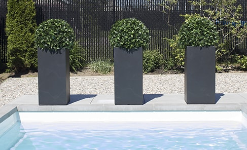 boxwood balls on tal black planters in luxe pool setting