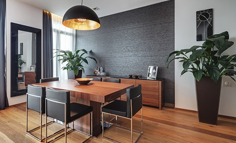 modern decor with plants