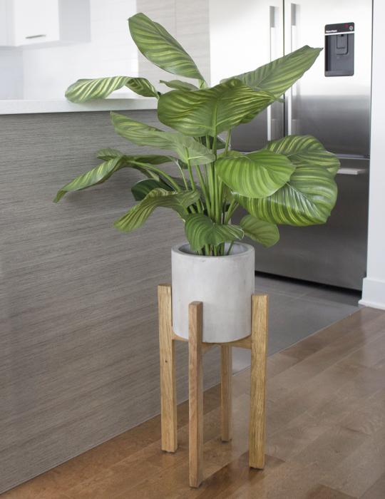 Magasin de d coration pour la maison plantes et fleurs for Accessoire de decoration pour maison