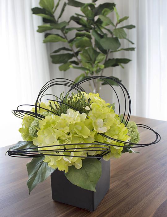 Magasin de d coration pour la maison plantes et fleurs for Magasin de plantes