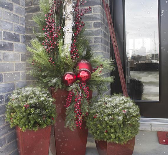 Magasin de d coration pour la maison plantes et fleurs - Magasin de decoration de noel exterieur ...
