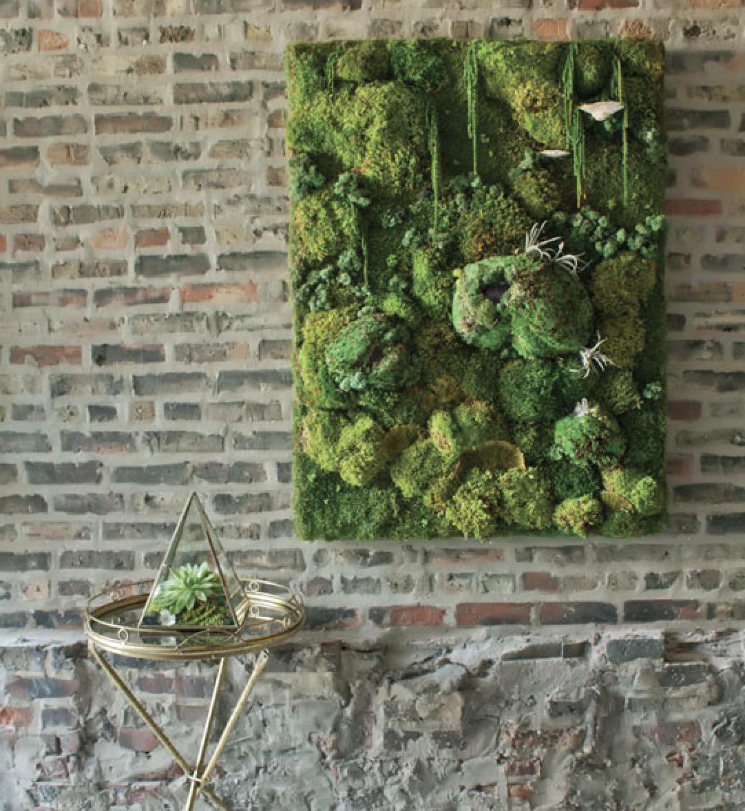 Mur Vegetal Plante Grasse décors véronneau - décors véronneau