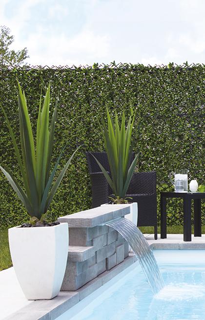 deco jardin avec palmier parterre deco jardin palmier saint etienne une soufflant deco cuisine. Black Bedroom Furniture Sets. Home Design Ideas