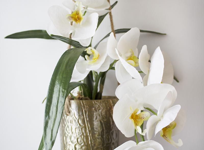 orchid e dans vase suspendu dor 22 x 24 39 39 d cors v ronneau. Black Bedroom Furniture Sets. Home Design Ideas