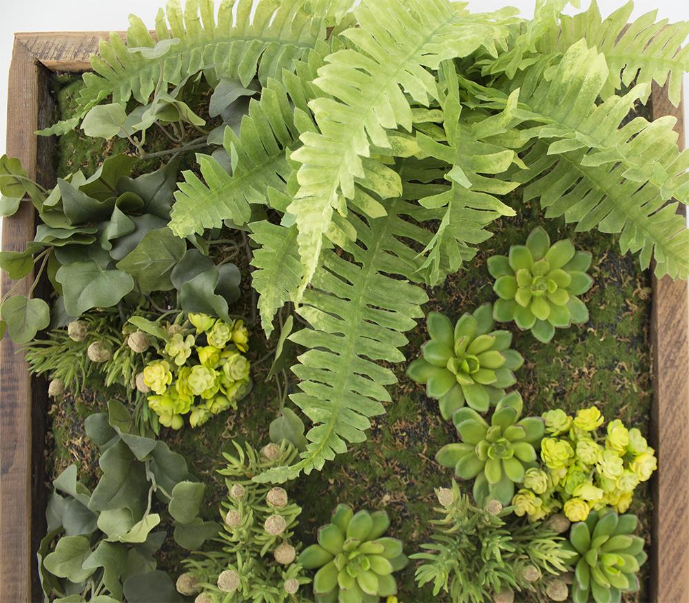 Mur Vegetal Plante Grasse mur végétal de feuillages retombants 18 x 18'' - décors