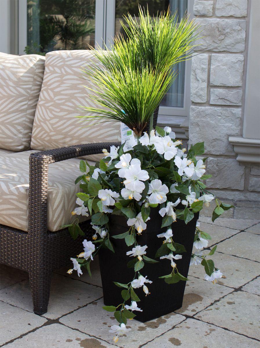 Arrangement papyrus et fleurs blanches 40 d cors v ronneau - Hibiscus exterieur en pot ...