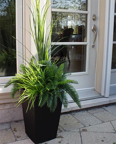 arrangement ext rieur dracaena et verdures 48 39 39 d cors v ronneau. Black Bedroom Furniture Sets. Home Design Ideas